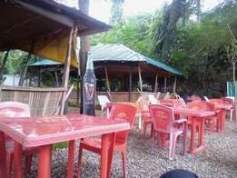 Restaurant, Bar, Grils etc For Rent !!