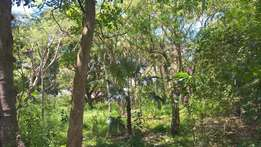 0.4 acre of a Plot Next to Afya hospital
