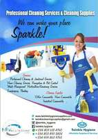 Affordable Professional Cleaning Services and Supplies and Fumigation
