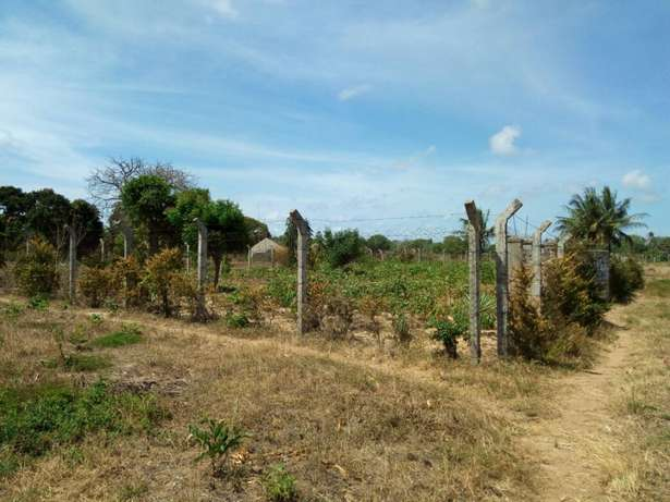 2 Adjacent 1/8 plots for sale in Kilifi Majengo - image 2