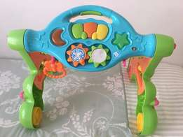 Baby Activity Play Gym and Walker