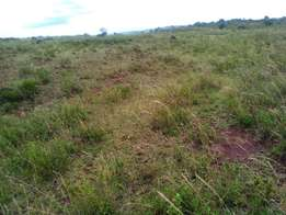 an 1/8 of an acre on sale in kibiko ngong