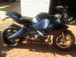 Best Buell for sale