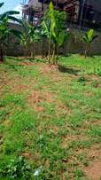 Land for sale in Akright estate Kabulengwa naluvule