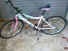 Brand new 26 inch Titan ladies bicycle