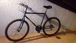 Mens Mountain Bicycle