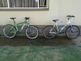 2 bicycles to buy