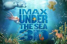 3D Movies on Sale