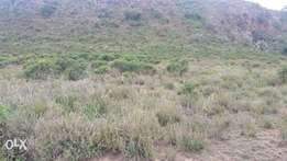 Plot for Sale(50by100) in Gilgil