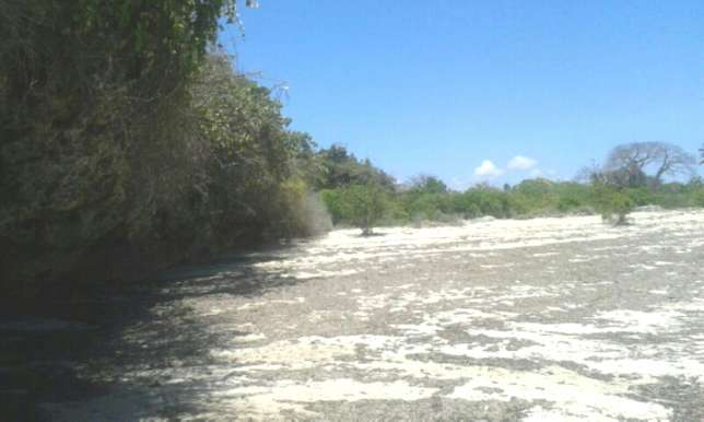 7 Acres Beach Plot For Sale in North Coast Mombasa With Clean Title Kilifi - image 4
