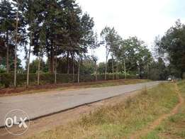 Tigoni 2 acres plot next to Birthday road
