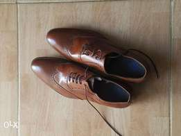 Brogues shoes brown