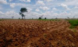 Premium farming land for sale