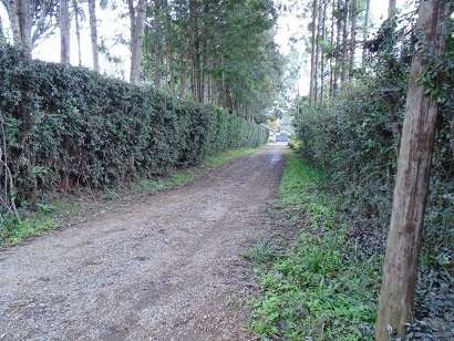0.4 acre vacant land for sale touching tarmac in karen Karen - image 3