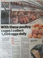 Battery Cages for 240 birds on Offer