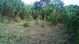 10 acres of fertile agricultural land for sale in Rutete, Fort Portal