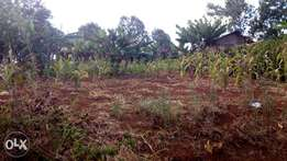 Affordable plot in near Harvard in Gatondo