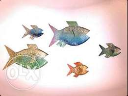 5 unique metal fish to hang on a wall or outside.