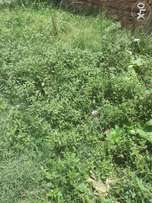 Am selling 3 acres of land in kalule bamunanika