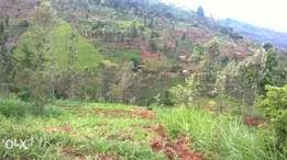 42 acres in Meru county available for sale
