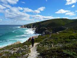 Space available on the Whale Trail - 10 to 15 September (Peak season)