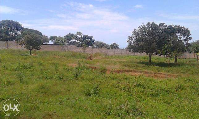 50x100 plot on sale with vast lake view of kasenyi landing site Entebbe - image 3