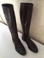 11a3aeebe Продам кожаные осенние сапоги 37 размера