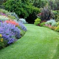 Top Quality Lawn? Call us today for a quote
