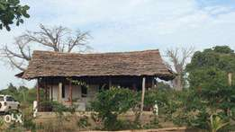 Countryside Cottage on 3 acres for sale in Ukunda