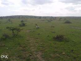 40 Acres of Prime land touching tarmac Near Dillons hotel in Ngoliba