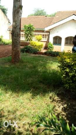 Apartment in 1/4 acre at Ring Road of Nyeri County for sale. Ring Road Estate - image 3