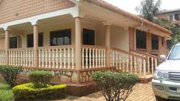 4bedrooms house for rent in Ntinda town