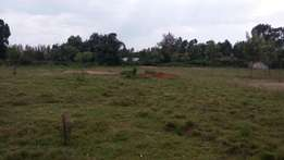 3 acres in Limuru on tarmac up for grabs! 21m/acre ONO