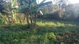Gathiga 1acre with 3mabati houses at 12m