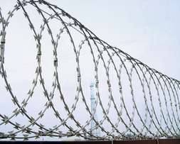 Concertina Razor Wire (NEW)