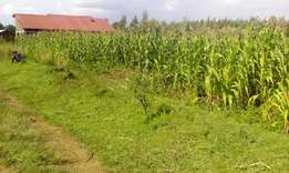 Land for sale in Njoro Rumwe