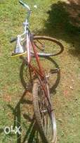 Mountain bicycle (used)