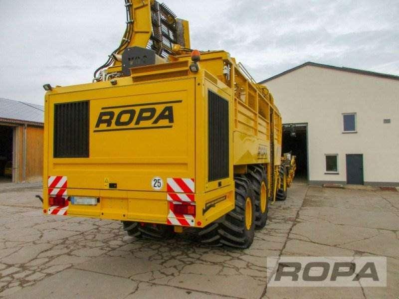 Ropa Euro-tiger V8-3 - 2011 - image 4