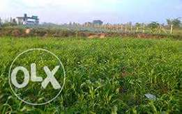 3/4 of an Acre on sale at Thimangiri Meru