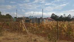 50x100 Plot for Sale at Kikuyu Gikambura