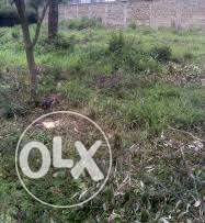 1/4 Acre off kikuyu Road for Sale