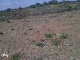awesome arragements on matuu plots 20k.