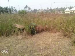 Land for sale in Adeje town
