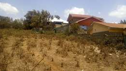 Prime 1/8 acre plots in Ngong