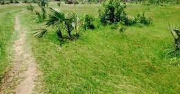 Land For Sale In Lamu