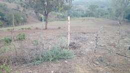 1/2 acre on sale with clean documents at 2.8 m on tarmac