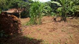 40 acres of land at matuga semuto rd