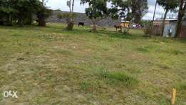 Plot for sale in kiti
