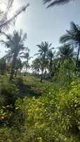 A prime beach plot of 3 acres for sale in chumani kilifi county.
