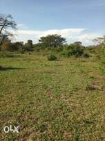 10 acres for sell.